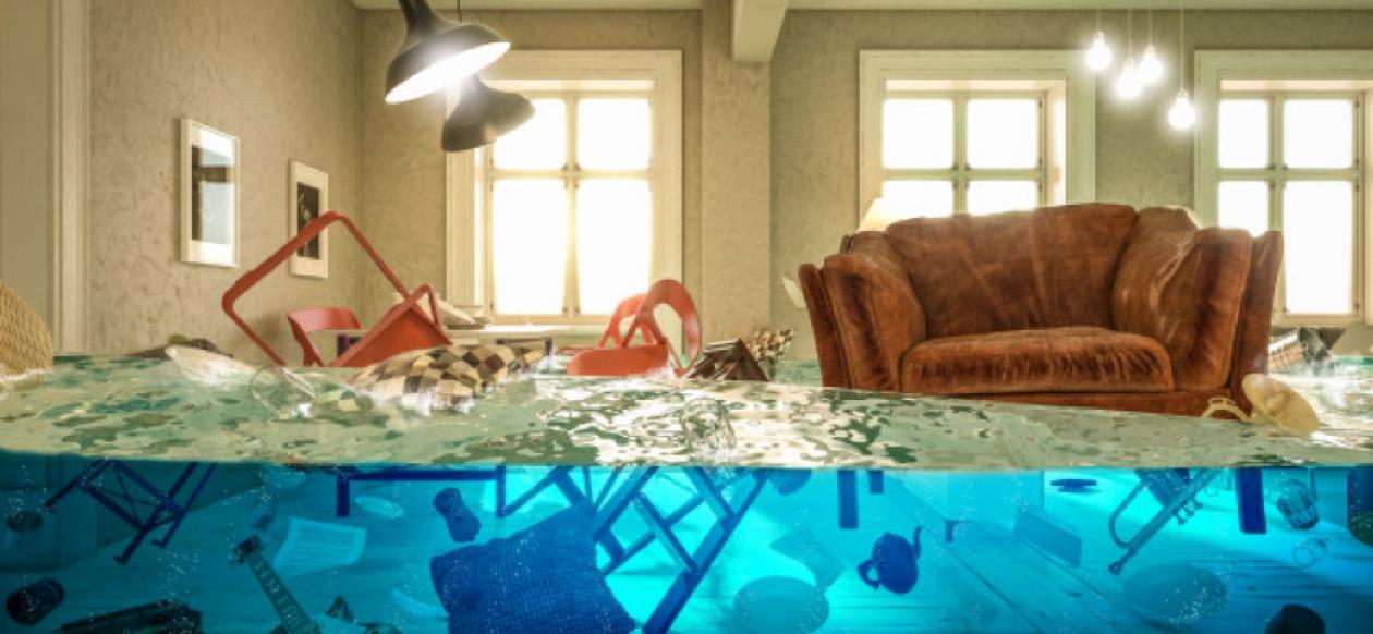 Rumah Terkena Banjir? Ini yang Perlu Anda Lakukan Agar Rumah Tak Jadi Sarang Penyakit